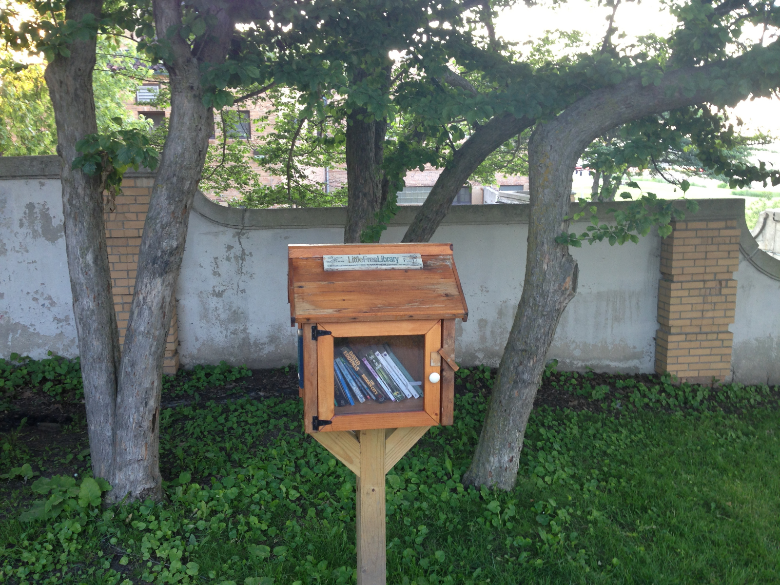 Little Free Library 1082 resides in South Shore Park.