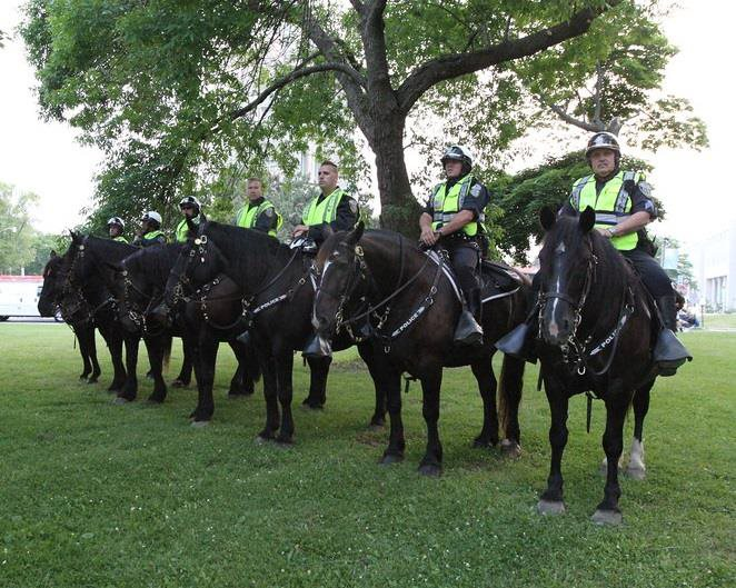 Milwaukee Police Horses