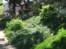 Transit Activist's Modest Bay View Cottage