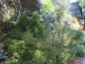 Historic Sanger House and Gardens
