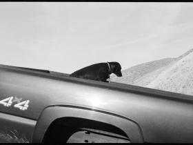 Dane Haman, Reno. Courtesy Dean Jensen Gallery.