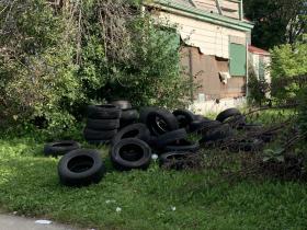 Illegal Dumping on 2600 block of Port Sunlight Way.