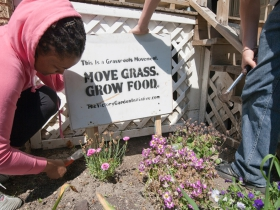 Victory Garden Initiative