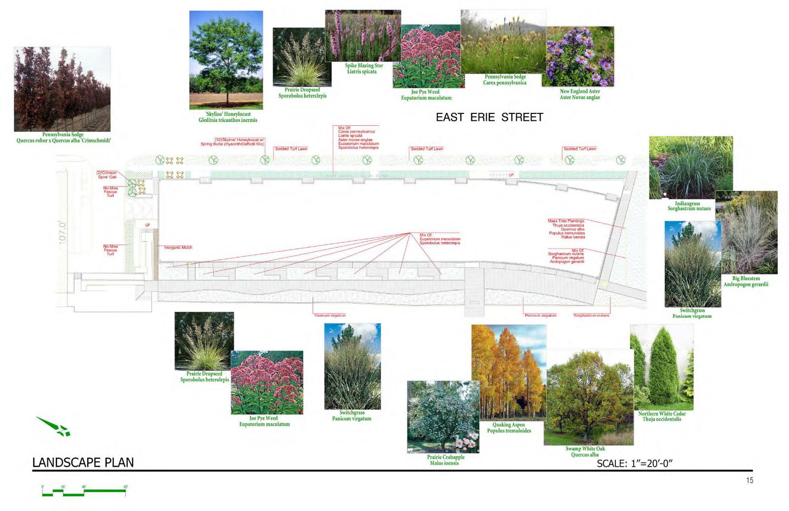 Domus Landscape Plan