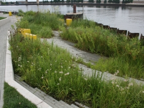 River frontage at Erie Street Plaza