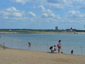 Urban Island Beach Party