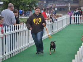 Fromm Petfest 2015