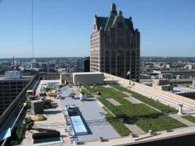 Green Roof Installation at 770 North