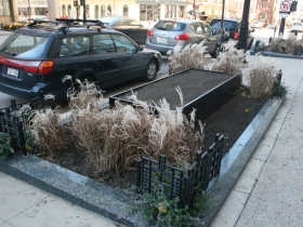 Winter Streetscaping