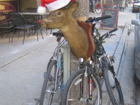 Mounted deer cycle parked outside the Swingin' Door Exchange, 225 E. Michigan St. Photo by Michael Horne.