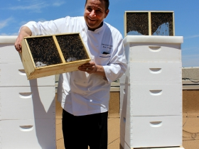 Chef Frakes and the beehives.