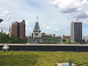 The Central Library features a green roof that can be viewed in tours on Wednesdays at noon, and Saturdays at 10 a.m.
