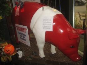 Barkley the pig