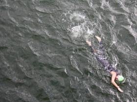Lone swimmer.