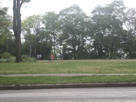 Pokemon Go players in Lake Park