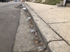 Litter along W. North Ave.