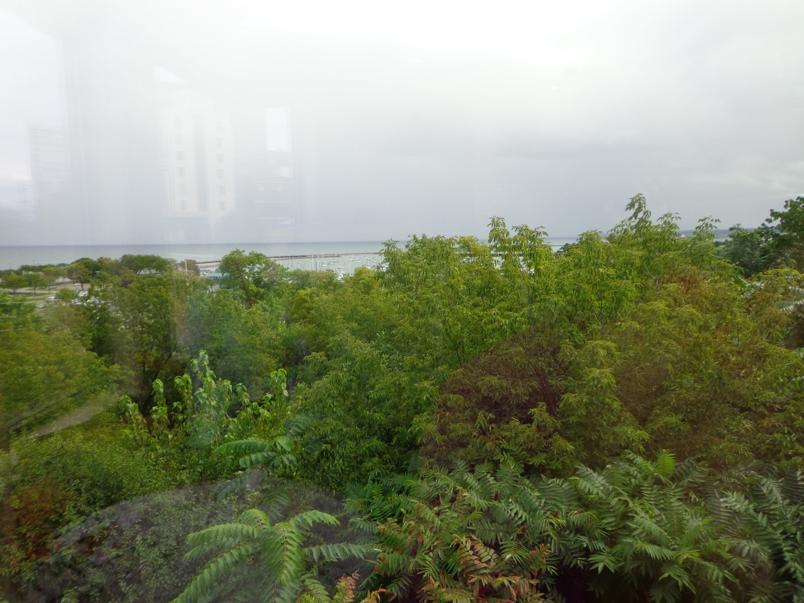 A view of the lake.