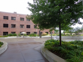 Courtyard between the buildings.