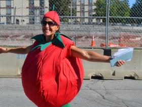 2017 Tomato Romp