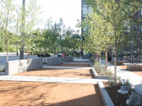 Denim Park.