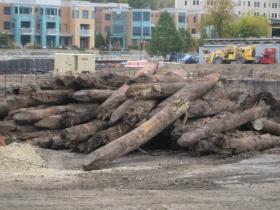 Old pilings.