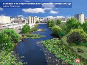 Burnham Canal Wetland Conversion