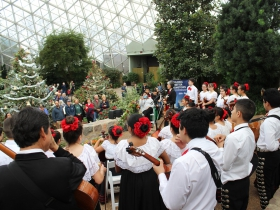 The Latino Arts Strings Program performing at the Domes Grand Reopening, December 1, 2016