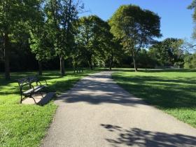 Bench in Lake Park
