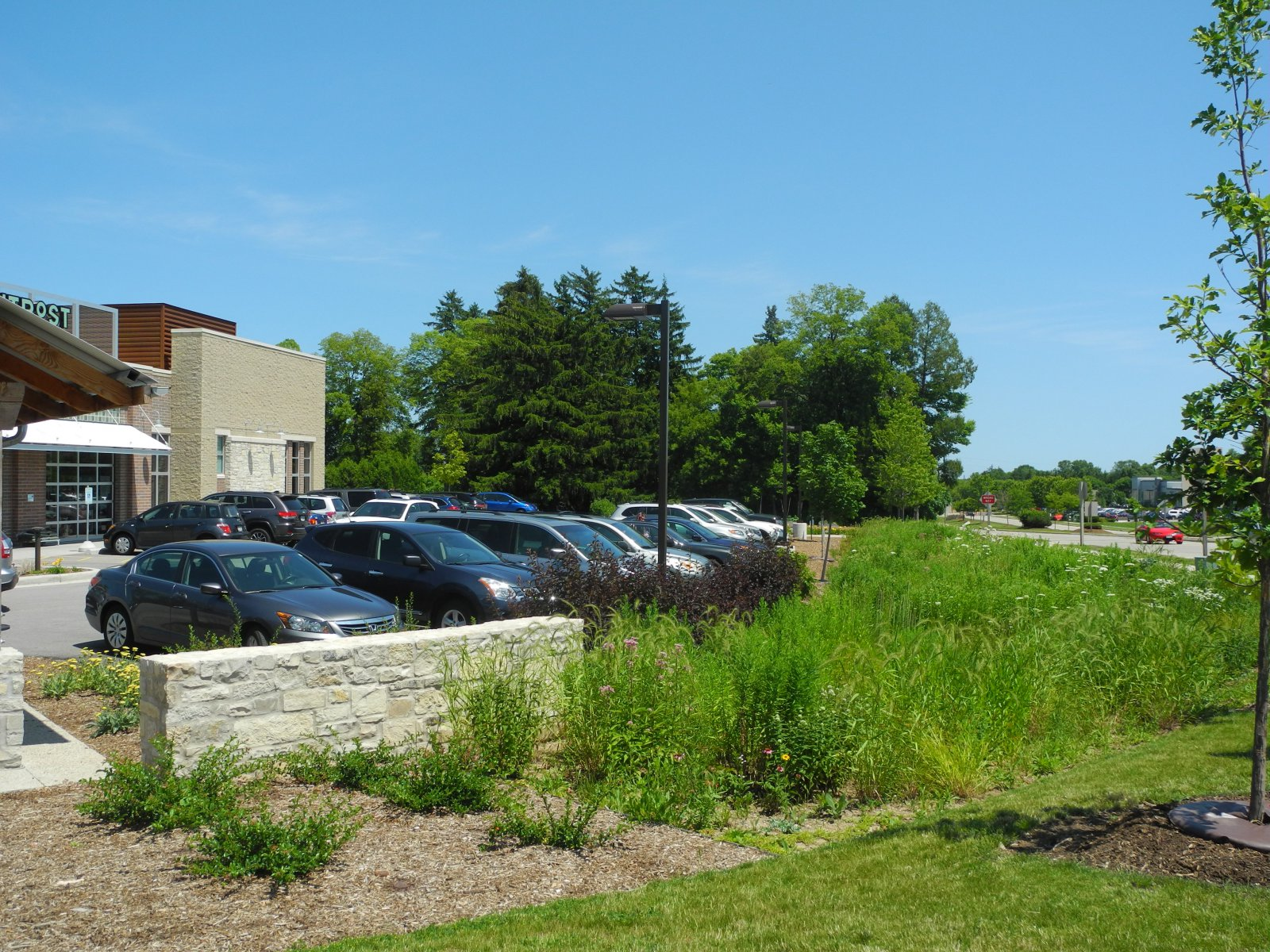 View of the rain garden at Outpost Natural Foods