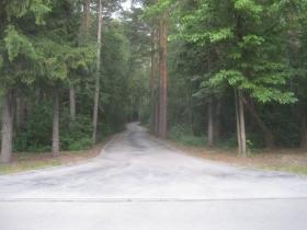 Driveway to the Minahan home.