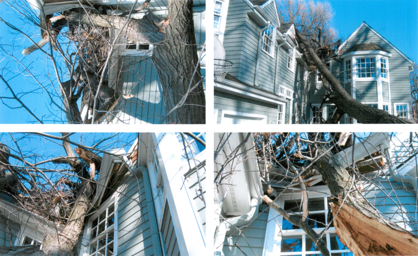 In 2006 a tree fell on the home causing significant damage.