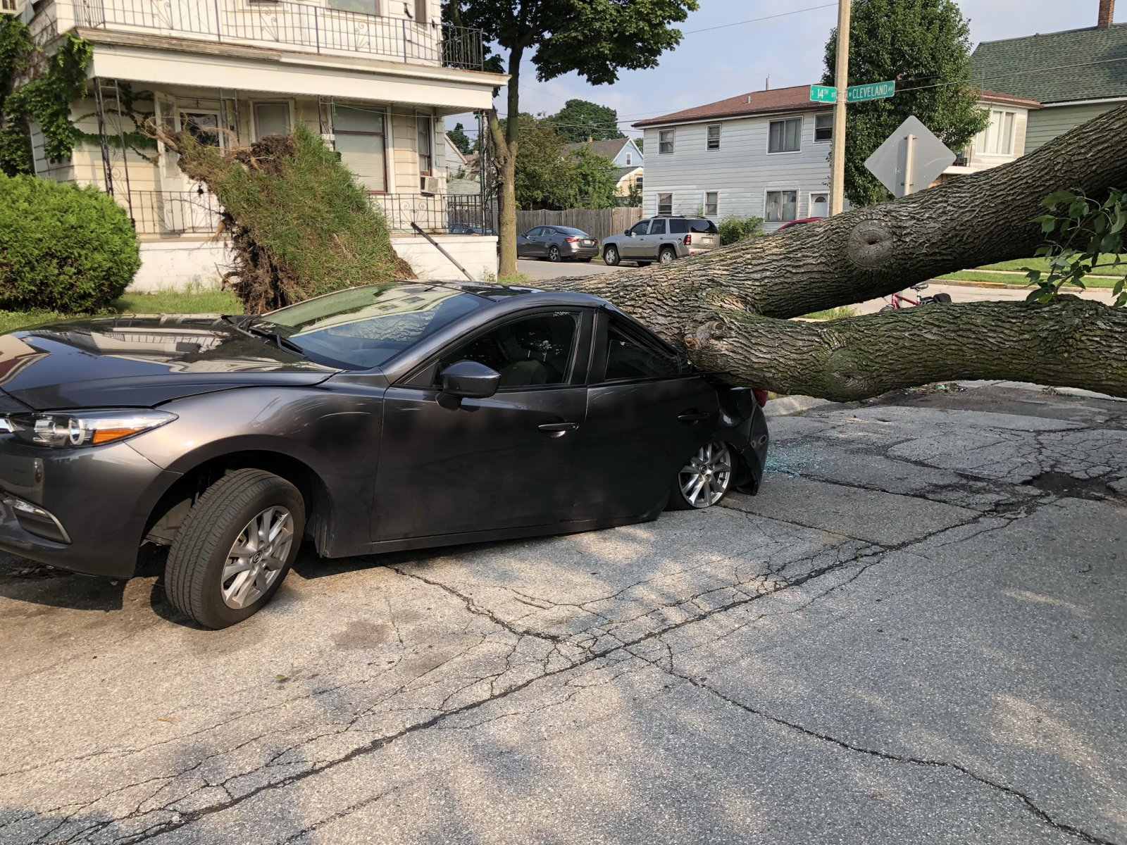 Tree Atop Car on S. 14th St.