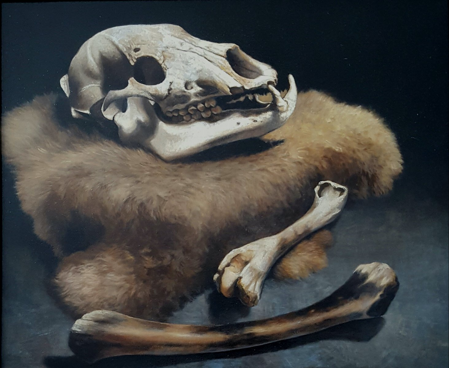 """""""Bare (Bear) Bones"""" by Jody Reid."""