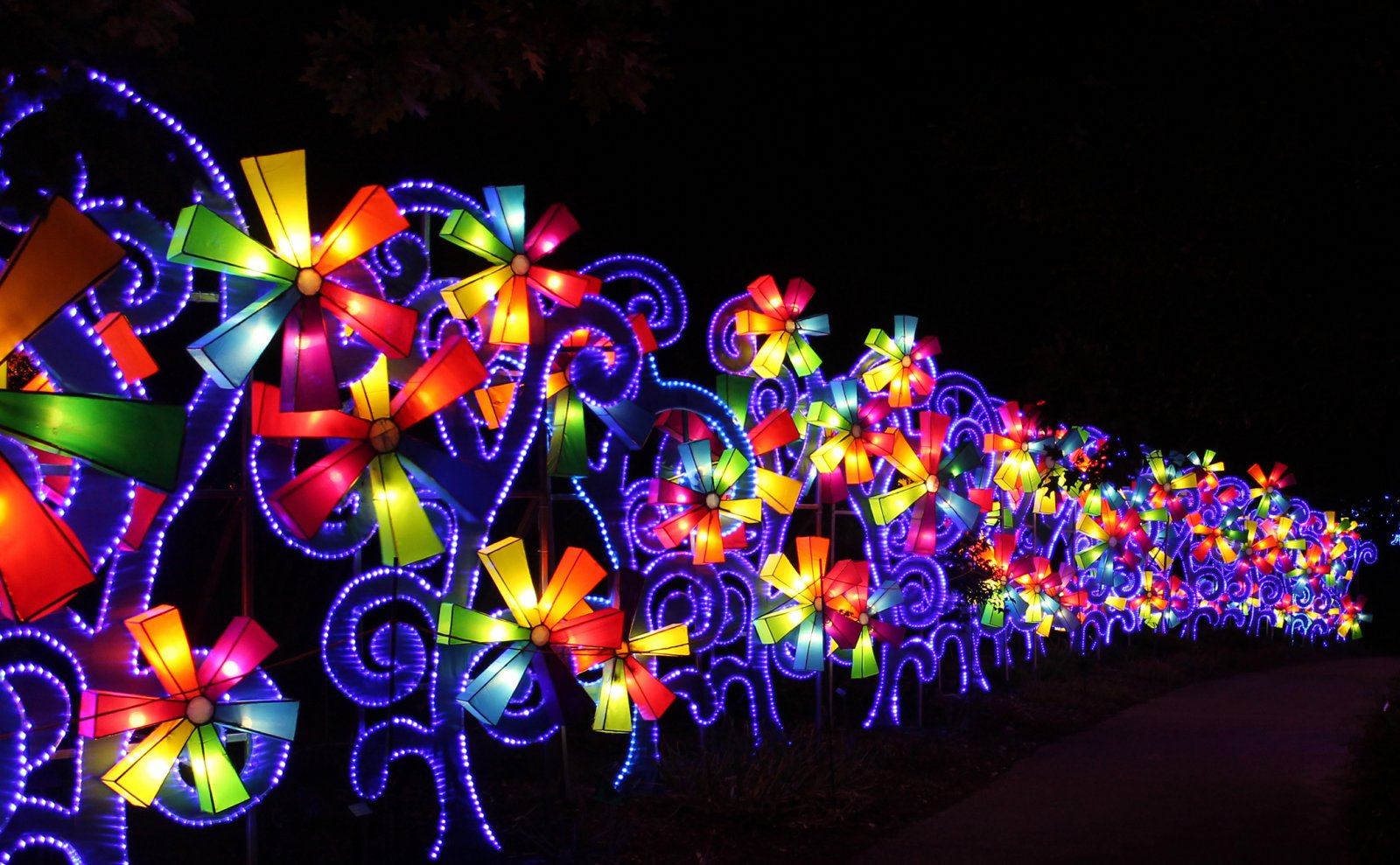 Chinese lantern festival s asian cuisine chicago weekend - China lights boerner botanical gardens ...