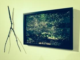 Gill: Installation 1.