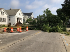 Tree Blocks Street