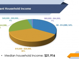 Anti-Displacement Fund Participant Income