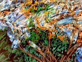 Tree Drawing by Adolph Rosenblatt.