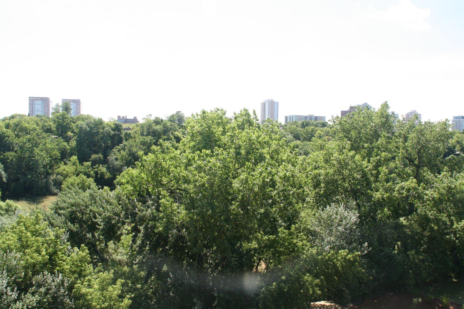 Southeastern View