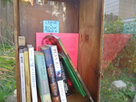 Books inside a Riverwest Little Free Library