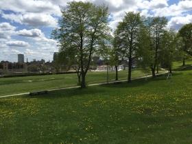 Alice Bertschy Kadish Park