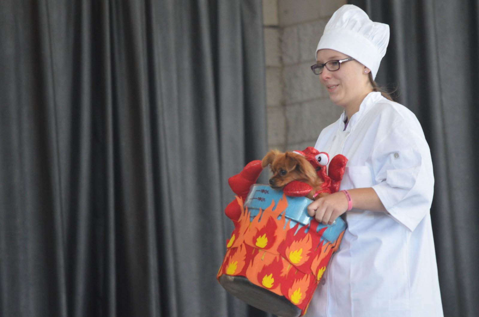 Costume contest at Petfest 2018