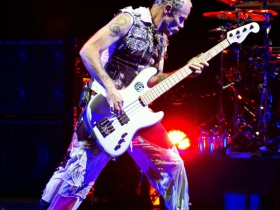 Red Hot Chili Peppers bass player, Flea