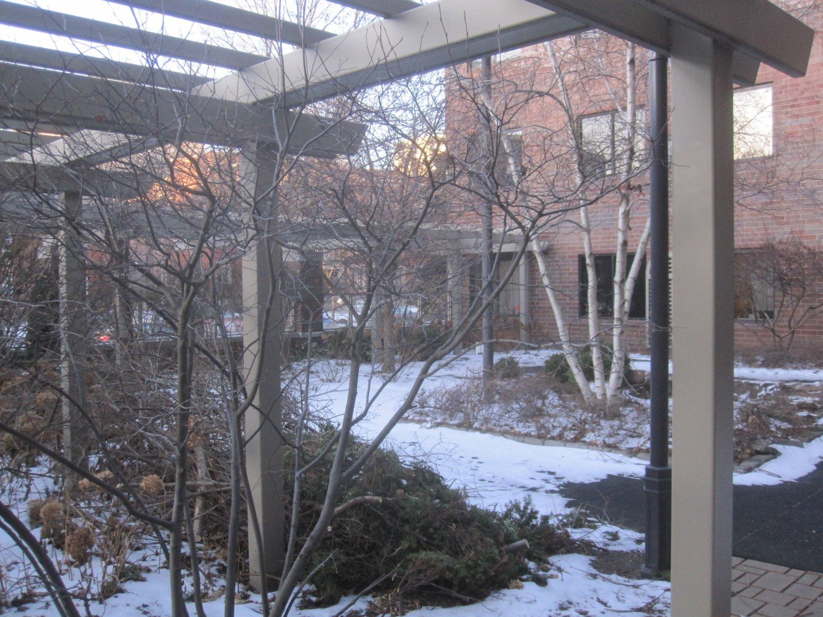 Walled garden area