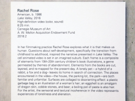 Rachel Rose, American, b. 1986.