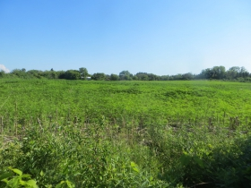 Eder Farm