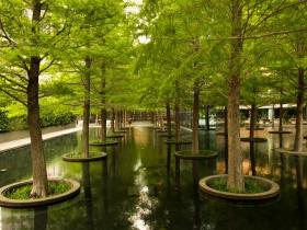 Fountain Place, Dallas, TX, 2013
