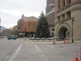 The City Christmas Tree