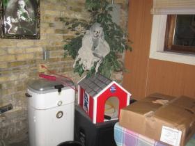 Pabst dog house