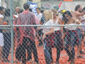 The of the tomato fight